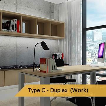 Type-C-DuplexWork
